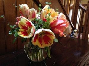 Gravetye tulips