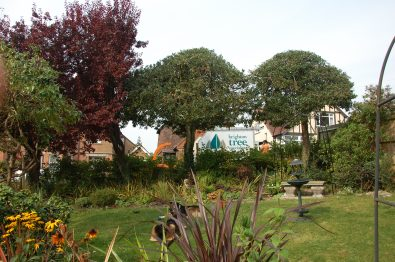 Hils garden #sept14 (16)