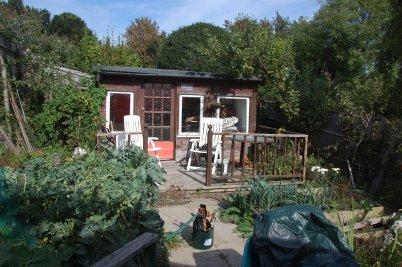 Hils garden #sept14 (2)