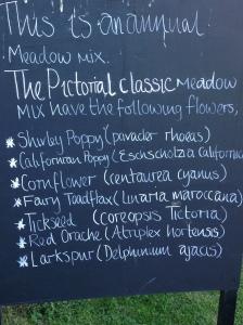 list of wildflowers arundel