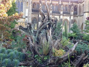 stumpery arundel