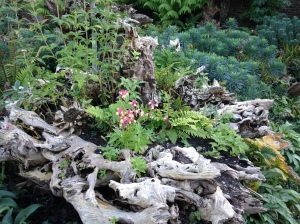 stumpery more