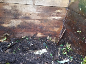 inside compost 2