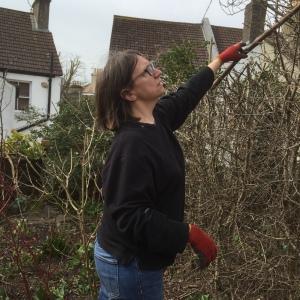 Nanette hedge